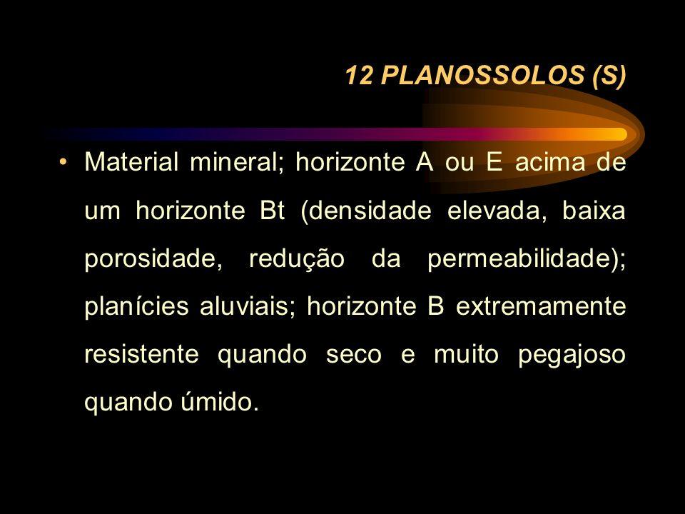 12 PLANOSSOLOS (S)