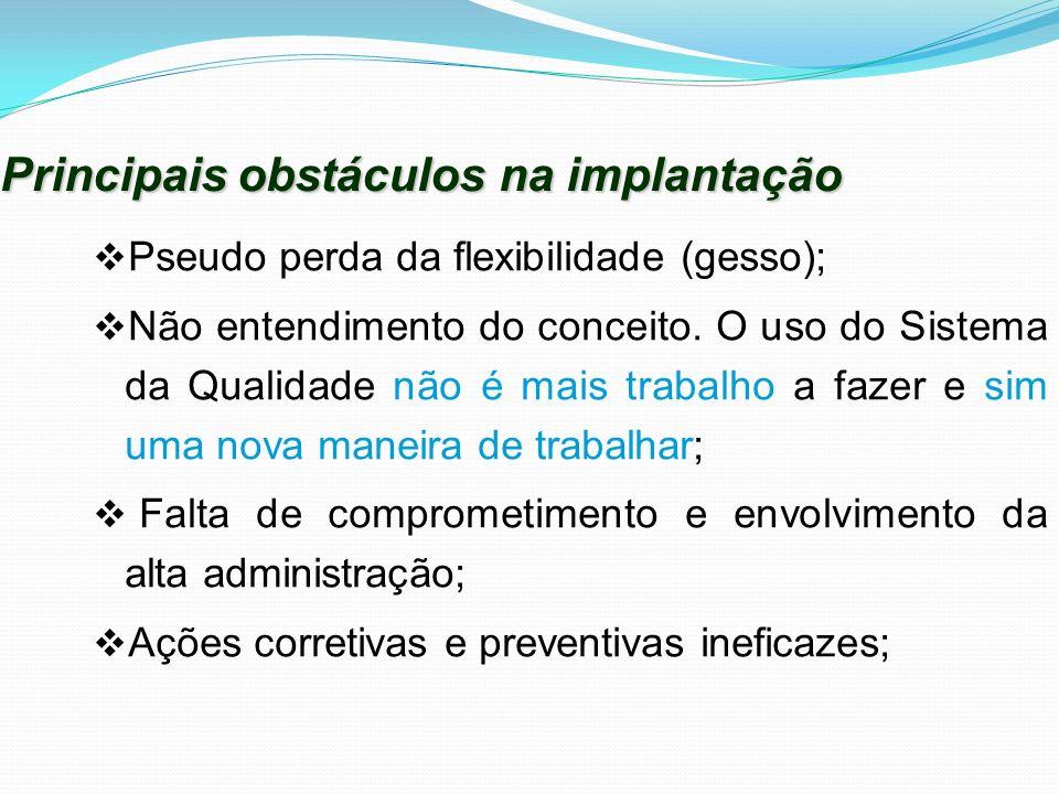 Principais obstáculos na implantação