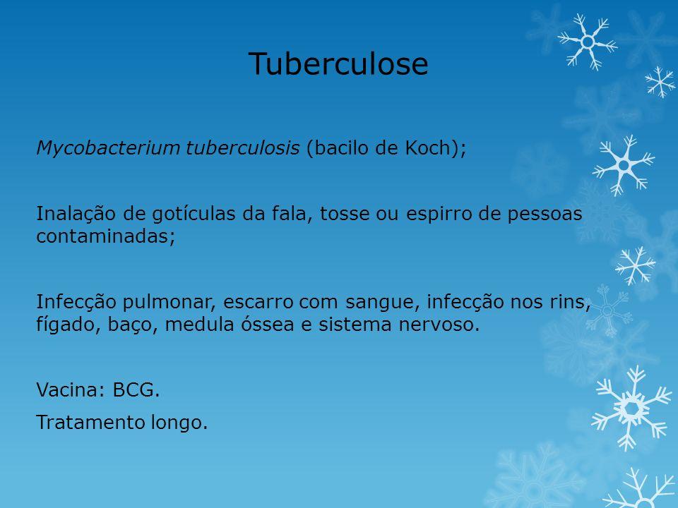 Tuberculose Mycobacterium tuberculosis (bacilo de Koch);
