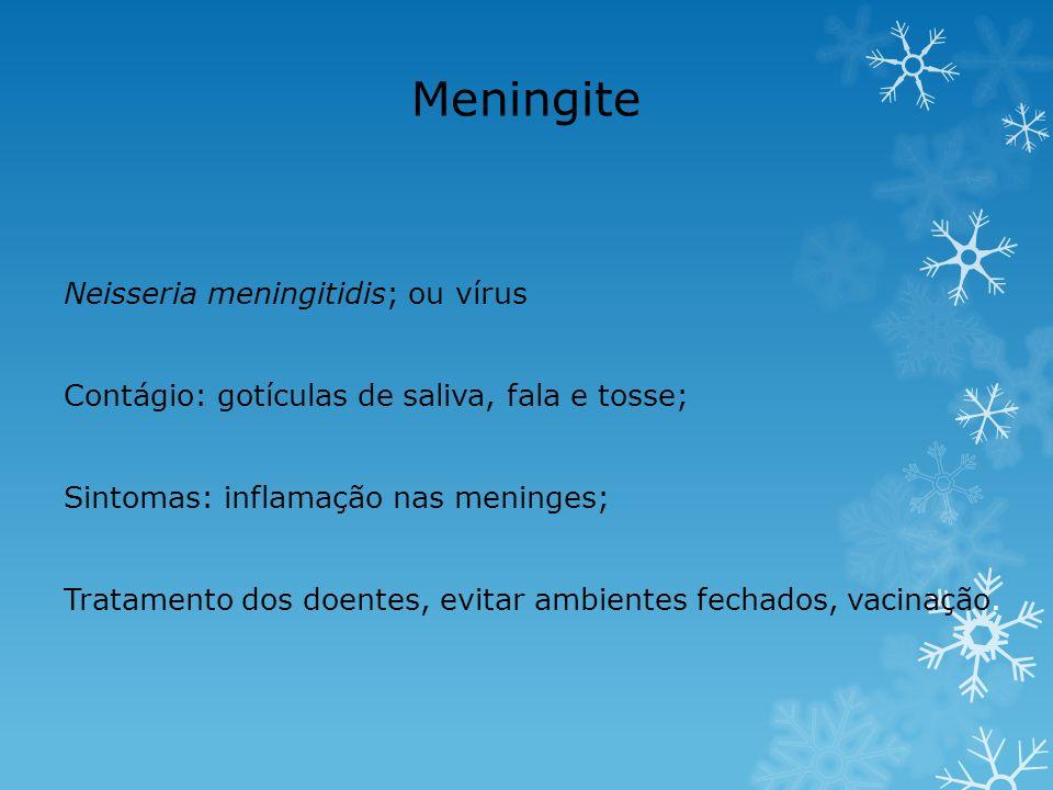 Meningite Neisseria meningitidis; ou vírus
