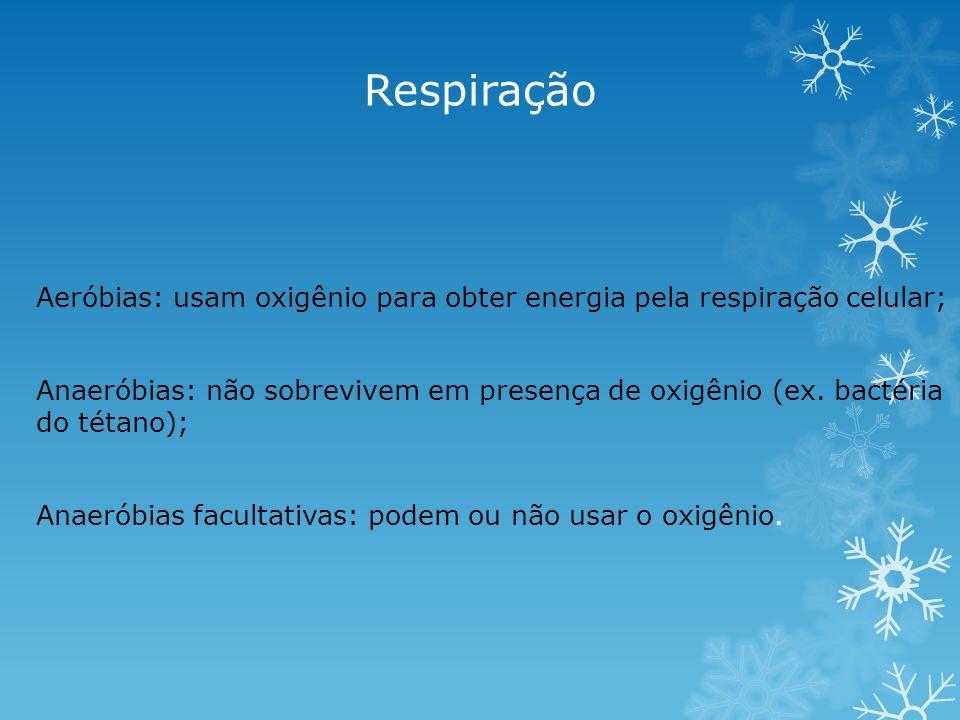 Respiração Aeróbias: usam oxigênio para obter energia pela respiração celular;