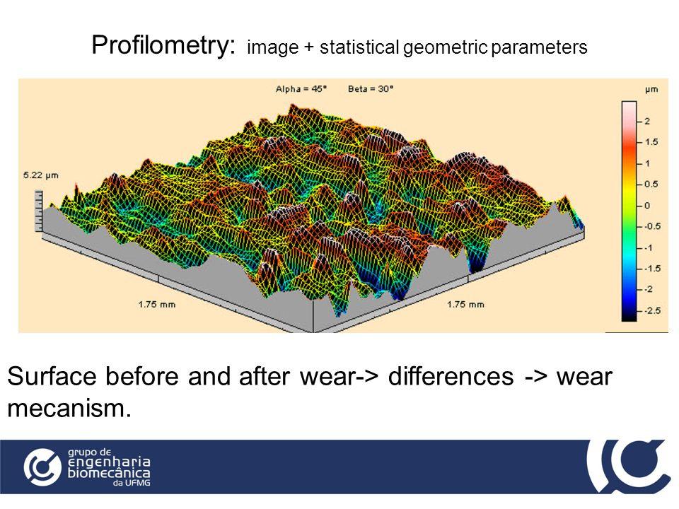 Profilometry: image + statistical geometric parameters