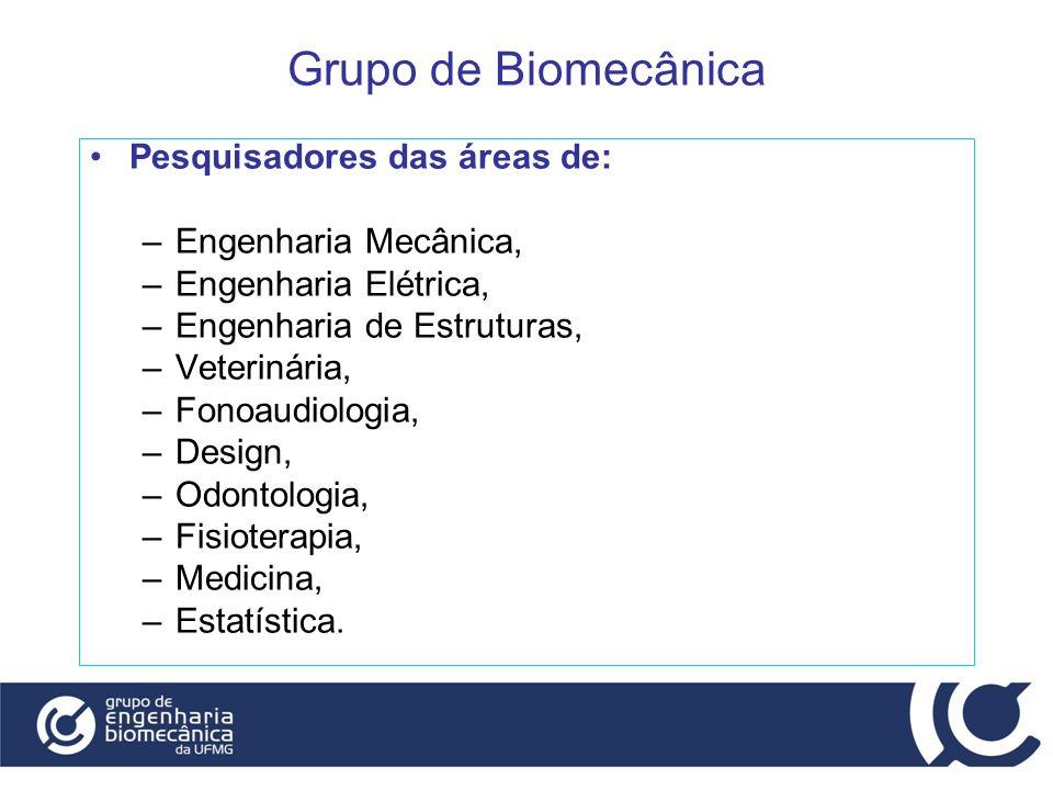 Grupo de Biomecânica Pesquisadores das áreas de: Engenharia Mecânica,