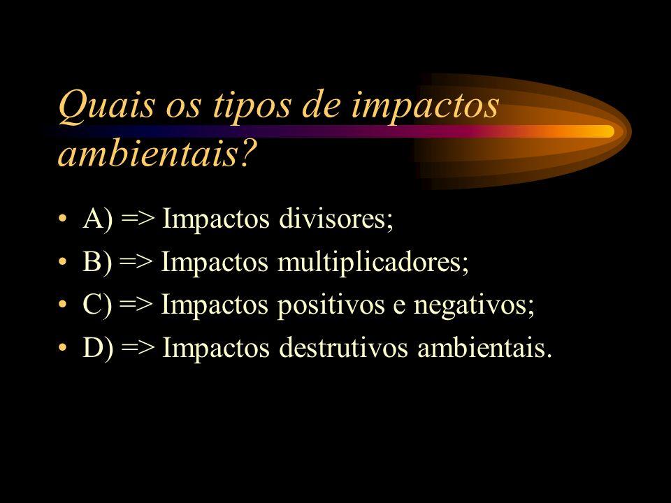 Quais os tipos de impactos ambientais
