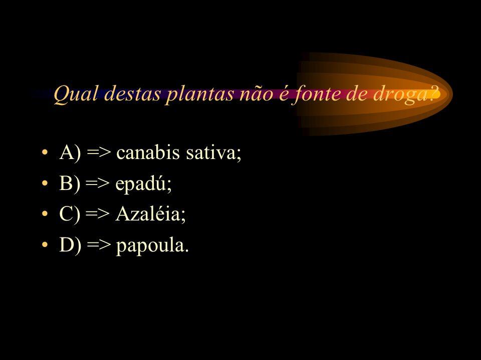 Qual destas plantas não é fonte de droga