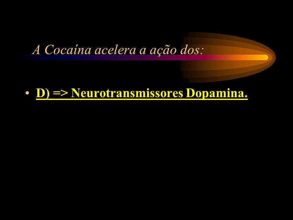 A Cocaína acelera a ação dos: