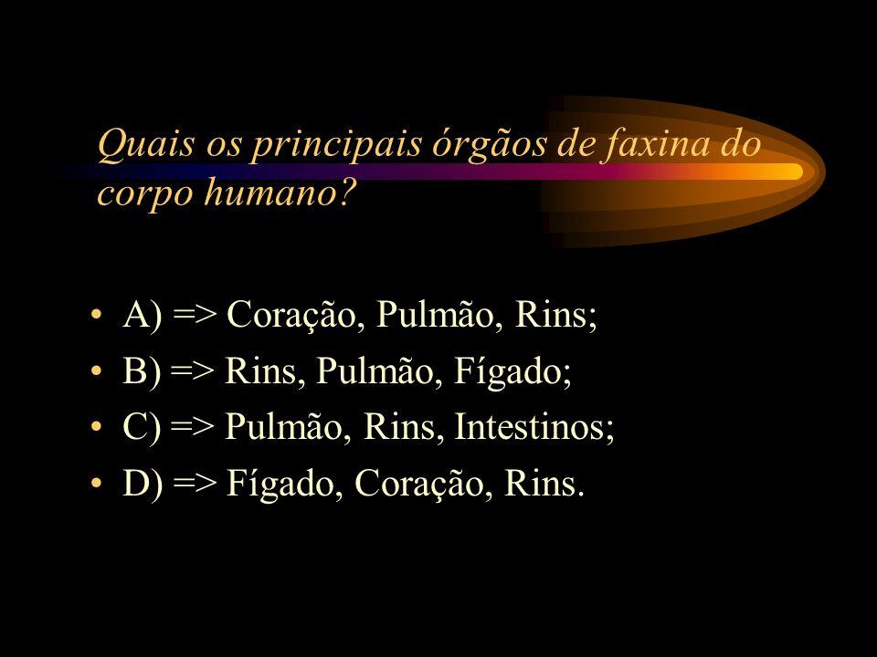 Quais os principais órgãos de faxina do corpo humano