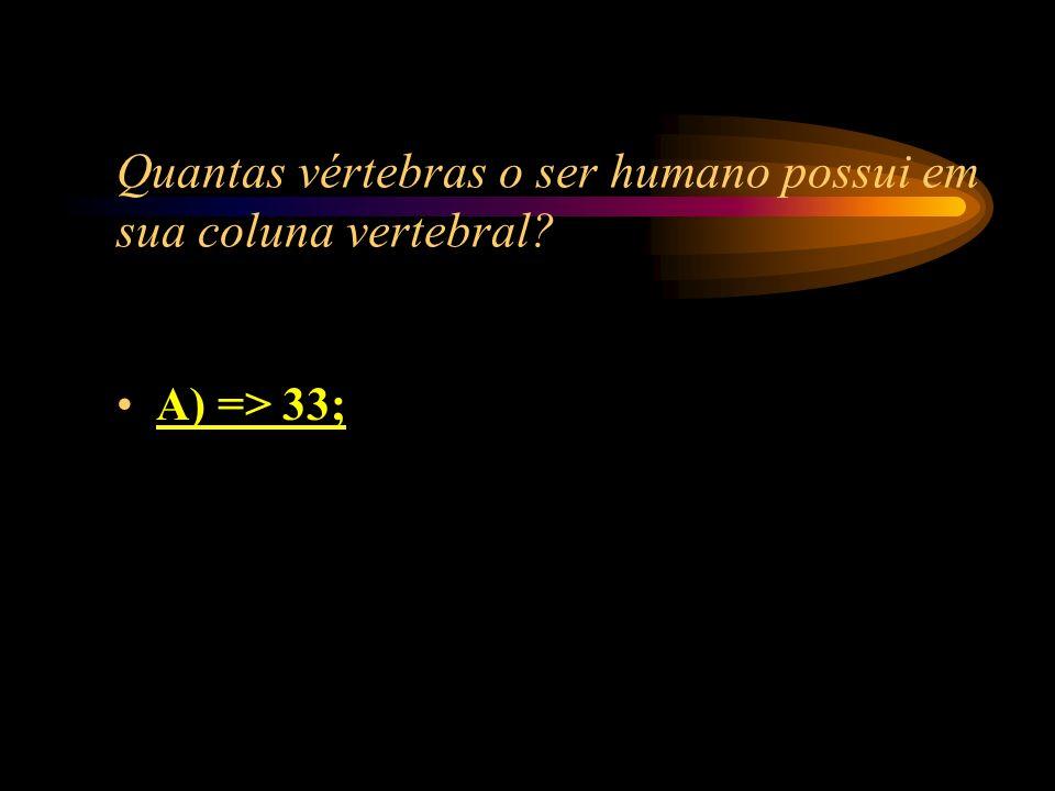 Quantas vértebras o ser humano possui em sua coluna vertebral
