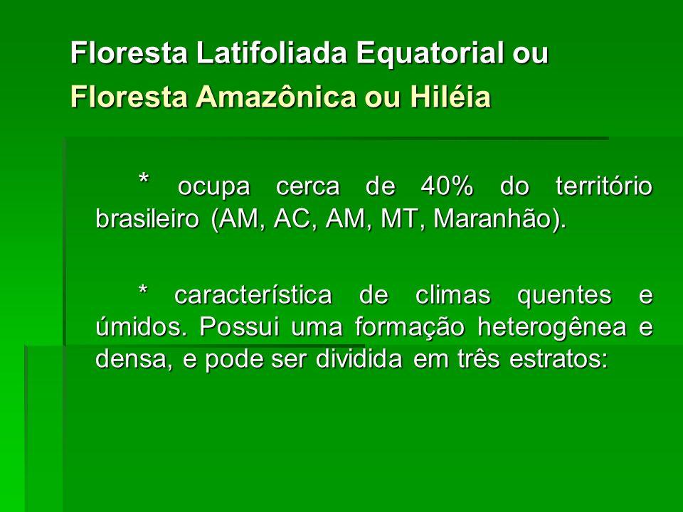 Floresta Latifoliada Equatorial ou Floresta Amazônica ou Hiléia