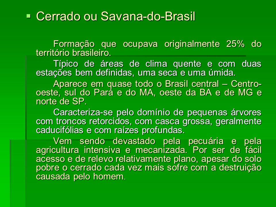 Cerrado ou Savana-do-Brasil
