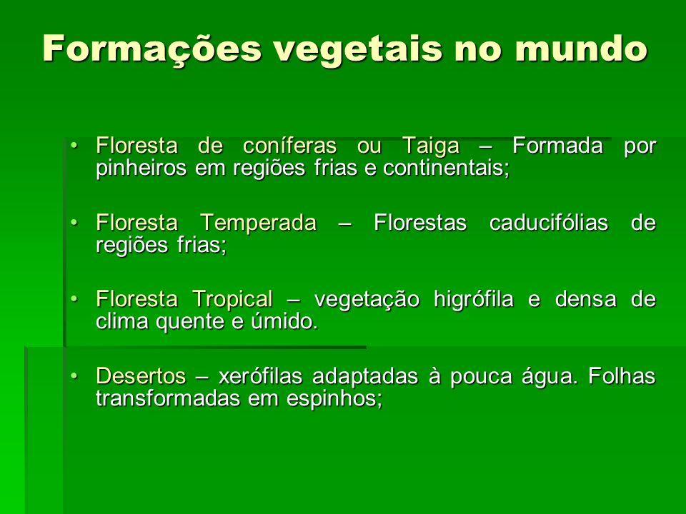 Formações vegetais no mundo