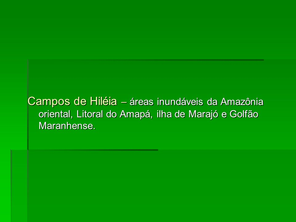 Campos de Hiléia – áreas inundáveis da Amazônia oriental, Litoral do Amapá, ilha de Marajó e Golfão Maranhense.