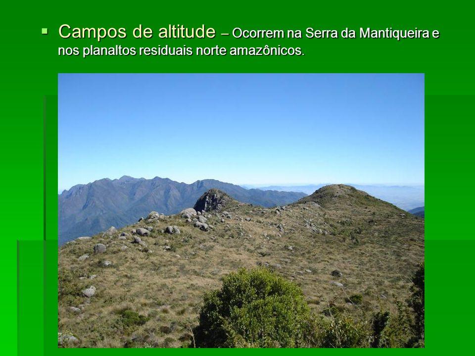 Campos de altitude – Ocorrem na Serra da Mantiqueira e nos planaltos residuais norte amazônicos.