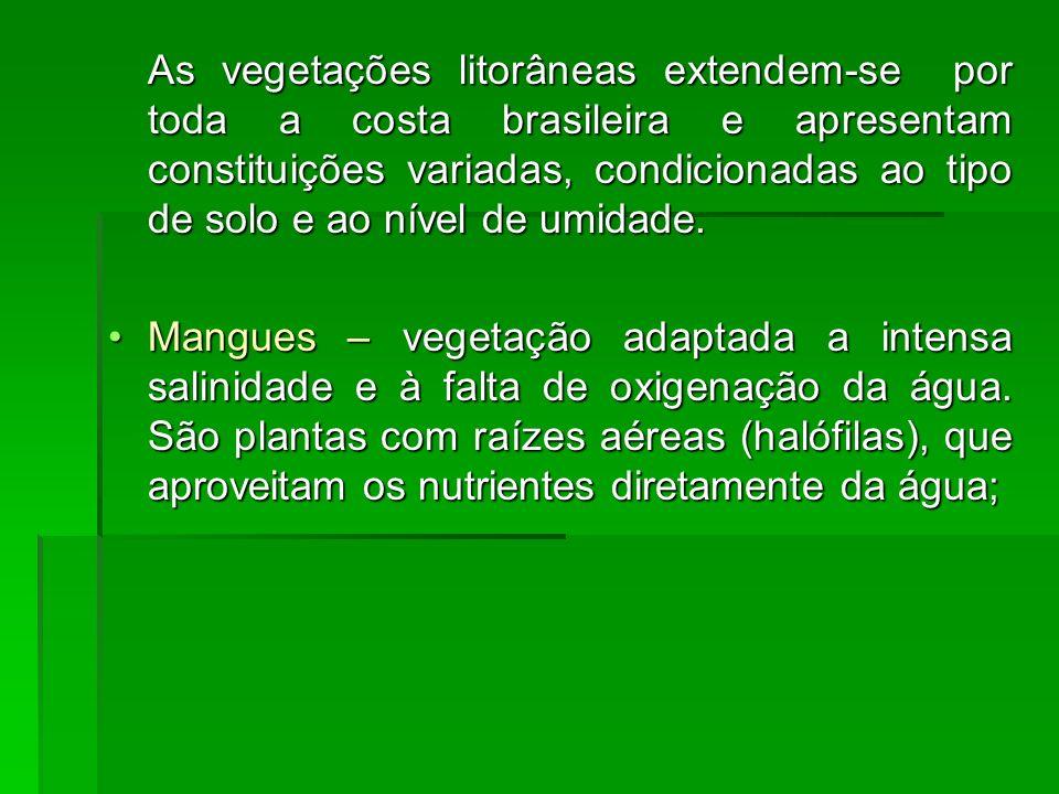 As vegetações litorâneas extendem-se por toda a costa brasileira e apresentam constituições variadas, condicionadas ao tipo de solo e ao nível de umidade.