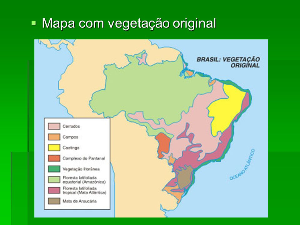 Mapa com vegetação original