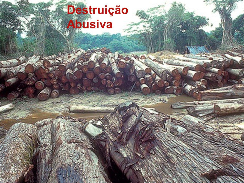 Destruição Abusiva