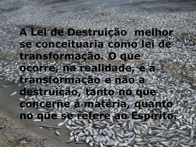 A Lei de Destruição melhor se conceituaria como lei de transformação