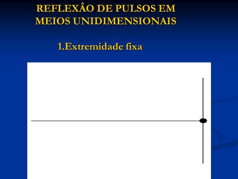 REFLEXÂO DE PULSOS EM MEIOS UNIDIMENSIONAIS