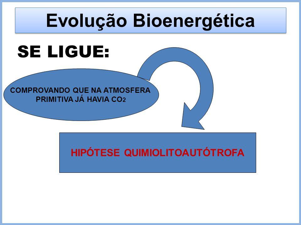 Evolução Bioenergética
