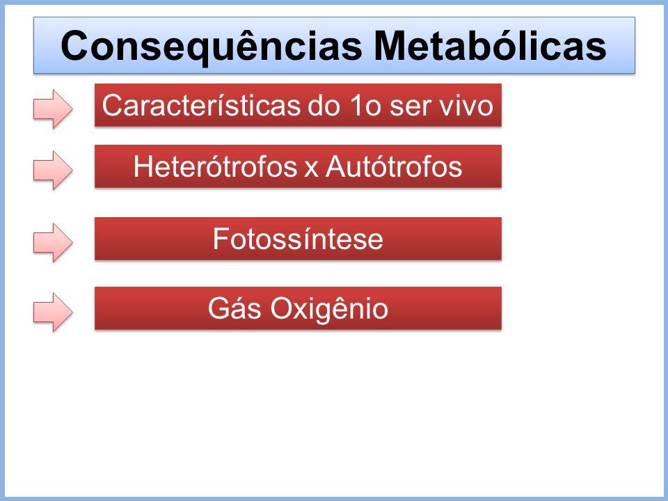 Consequências Metabólicas