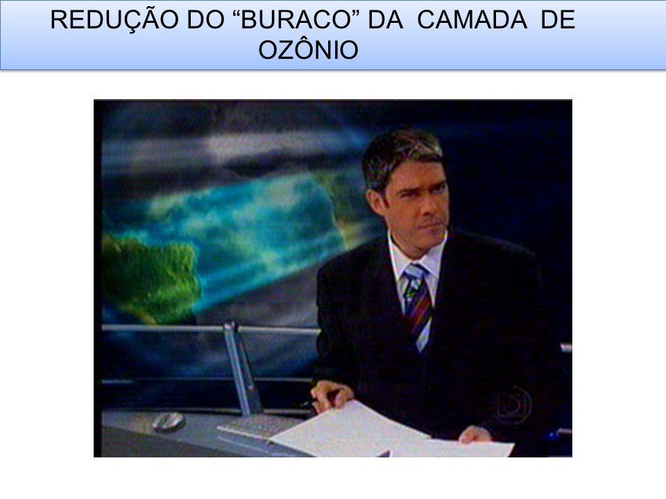 REDUÇÃO DO BURACO DA CAMADA DE