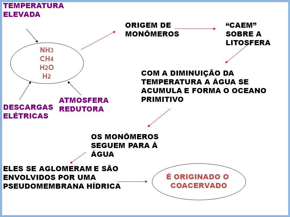 TEMPERATURA ELEVADA ORIGEM DE MONÔMEROS. CAEM SOBRE A LITOSFERA. NH3. CH4. H2O. H2.