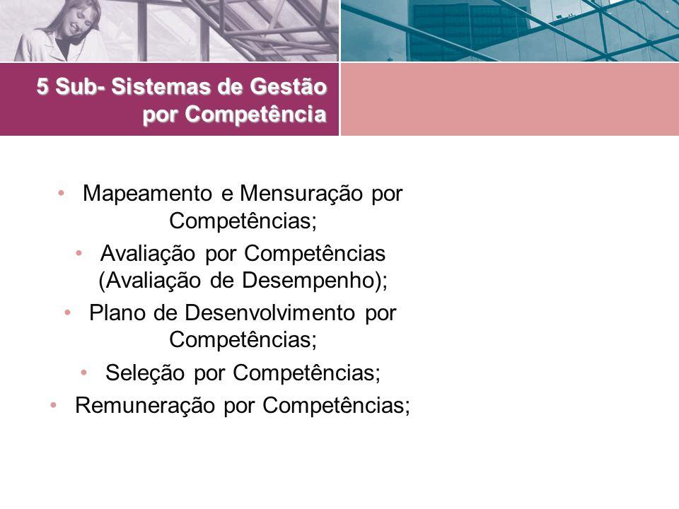 5 Sub- Sistemas de Gestão por Competência