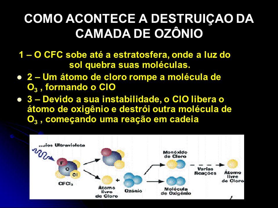 COMO ACONTECE A DESTRUIÇAO DA CAMADA DE OZÔNIO