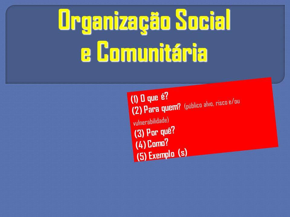 Organização Social e Comunitária