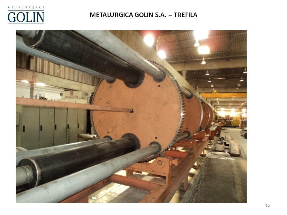 METALURGICA GOLIN S.A. – TREFILA
