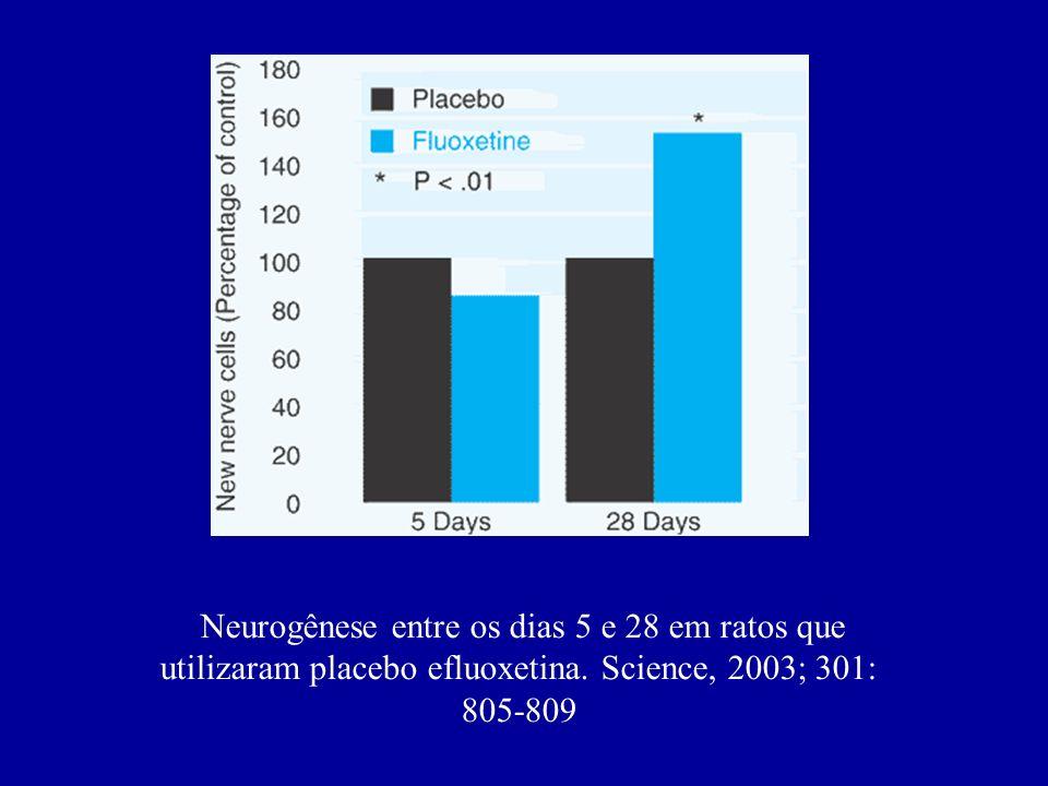 Neurogênese entre os dias 5 e 28 em ratos que utilizaram placebo efluoxetina.