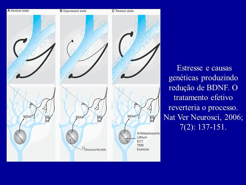 Estresse e causas genéticas produzindo redução de BDNF
