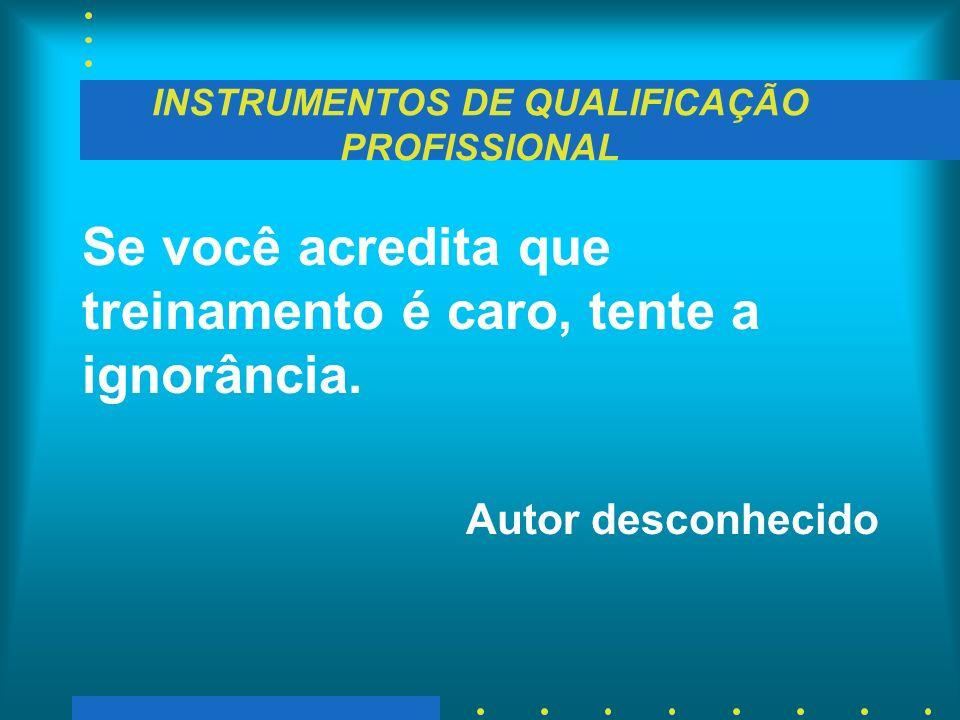 INSTRUMENTOS DE QUALIFICAÇÃO PROFISSIONAL