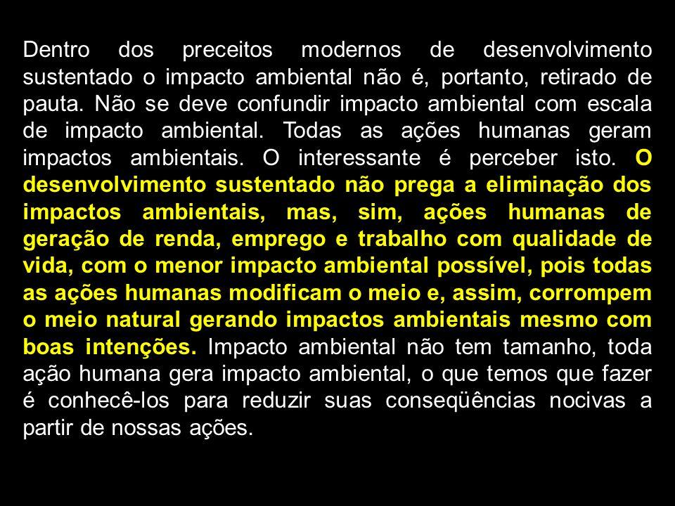 Dentro dos preceitos modernos de desenvolvimento sustentado o impacto ambiental não é, portanto, retirado de pauta.