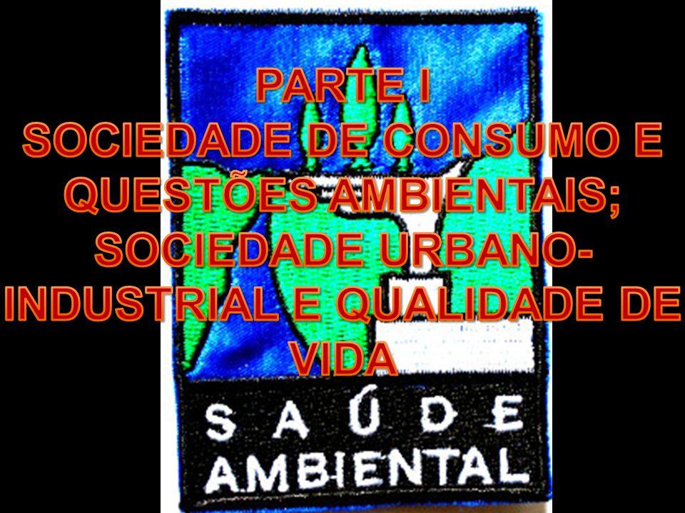 SOCIEDADE DE CONSUMO E QUESTÕES AMBIENTAIS;
