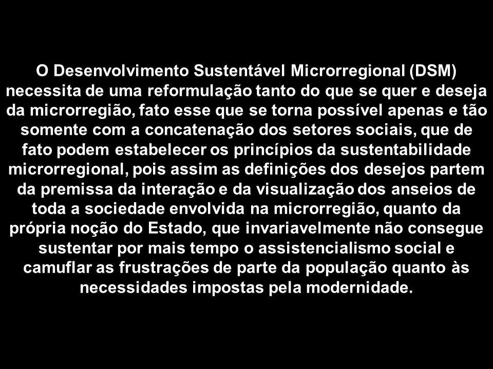 O Desenvolvimento Sustentável Microrregional (DSM) necessita de uma reformulação tanto do que se quer e deseja da microrregião, fato esse que se torna possível apenas e tão somente com a concatenação dos setores sociais, que de fato podem estabelecer os princípios da sustentabilidade microrregional, pois assim as definições dos desejos partem da premissa da interação e da visualização dos anseios de toda a sociedade envolvida na microrregião, quanto da própria noção do Estado, que invariavelmente não consegue sustentar por mais tempo o assistencialismo social e camuflar as frustrações de parte da população quanto às necessidades impostas pela modernidade.