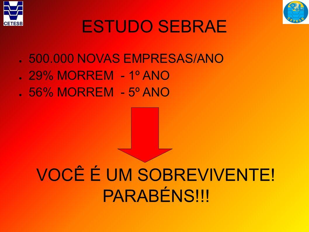 ESTUDO SEBRAE VOCÊ É UM SOBREVIVENTE! PARABÉNS!!!