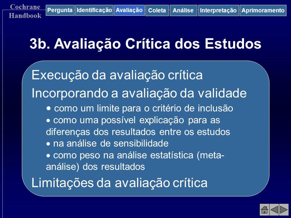 3b. Avaliação Crítica dos Estudos