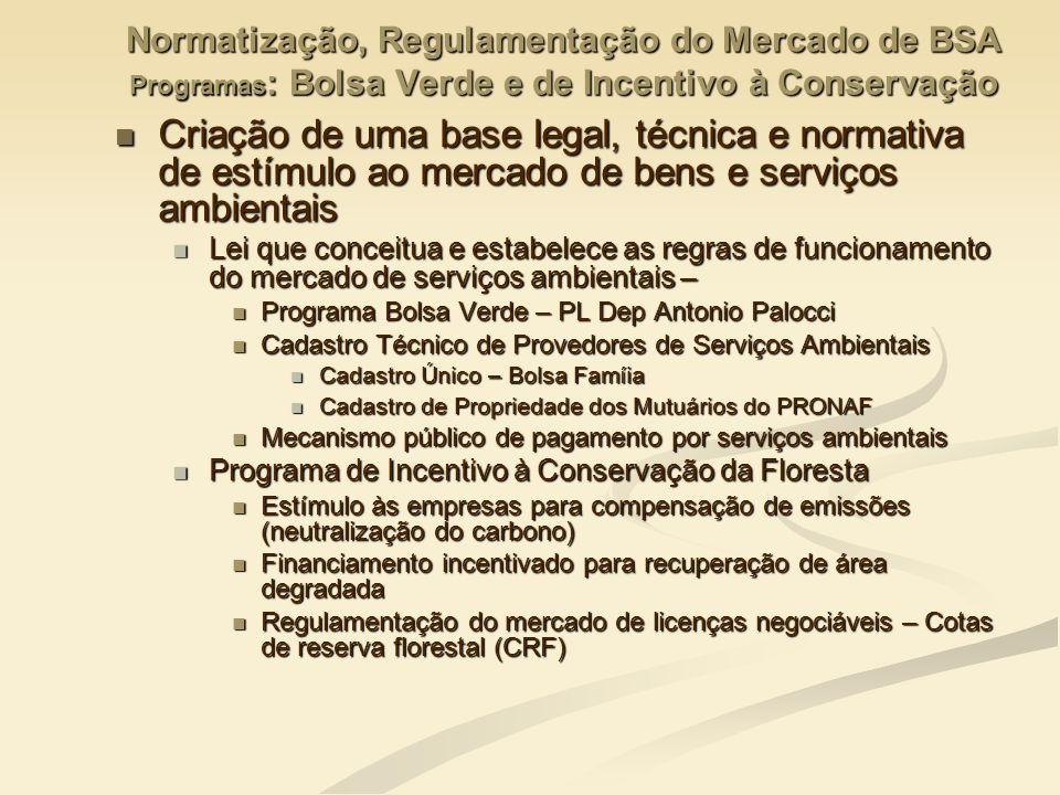 Normatização, Regulamentação do Mercado de BSA Programas: Bolsa Verde e de Incentivo à Conservação