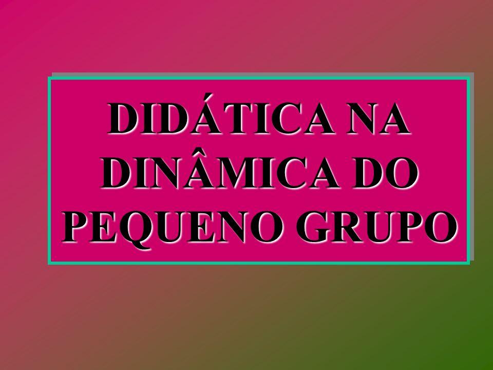 DIDÁTICA NA DINÂMICA DO PEQUENO GRUPO