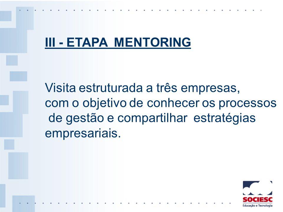 III - ETAPA MENTORING Visita estruturada a três empresas, com o objetivo de conhecer os processos.