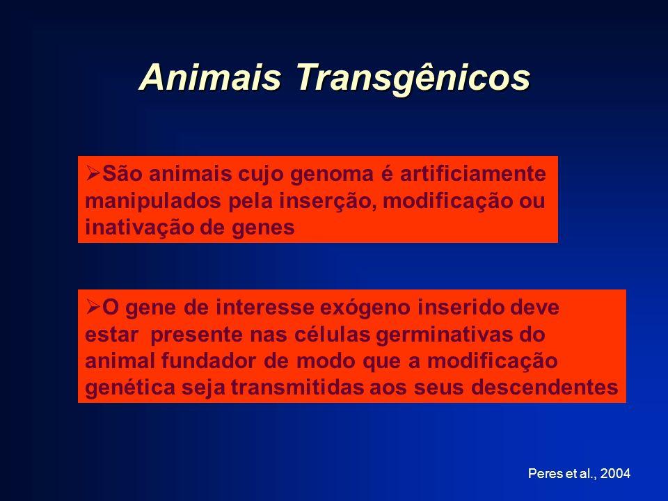 Animais Transgênicos São animais cujo genoma é artificiamente