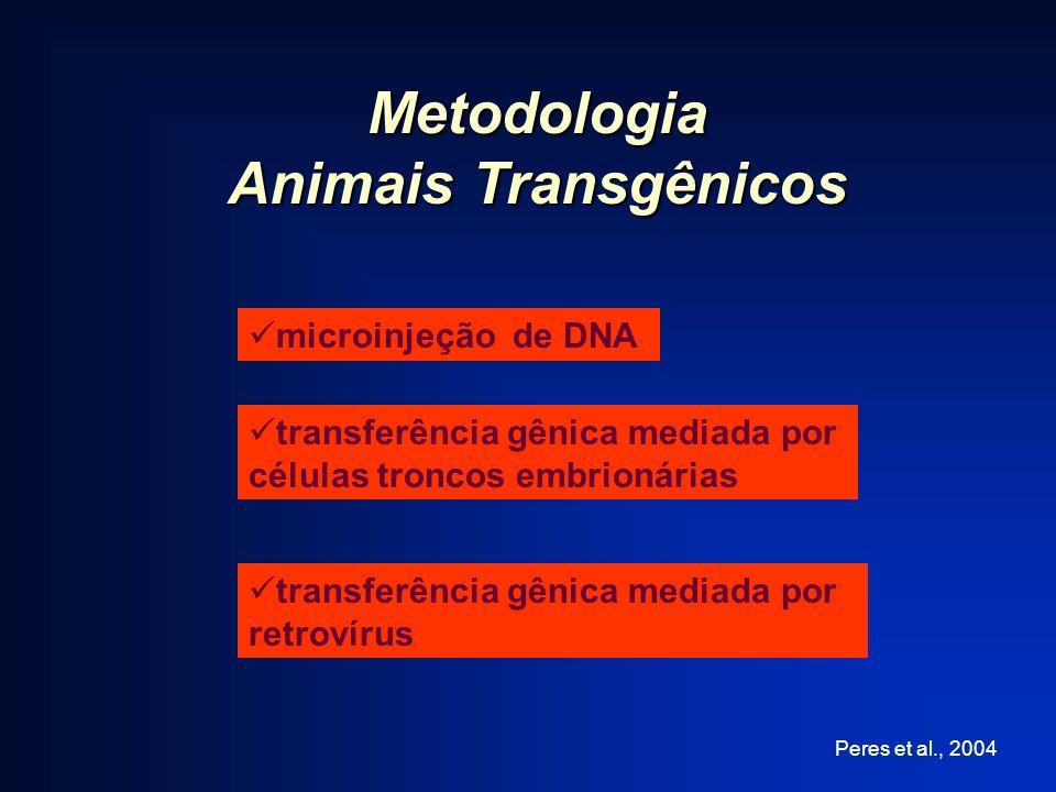 Metodologia Animais Transgênicos