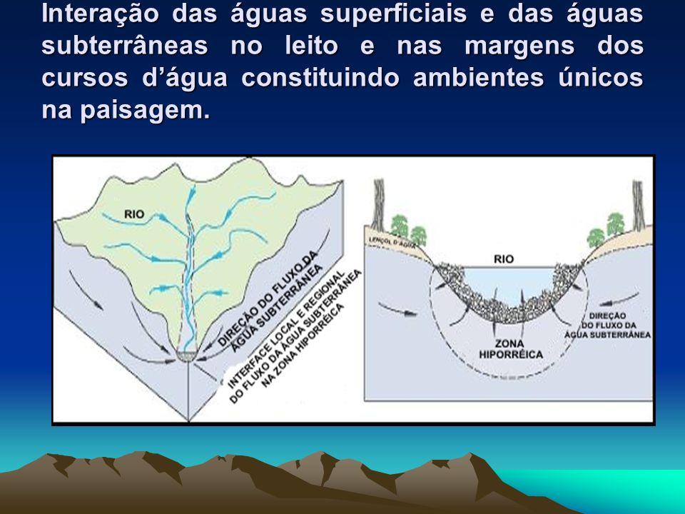 Interação das águas superficiais e das águas subterrâneas no leito e nas margens dos cursos d'água constituindo ambientes únicos na paisagem.