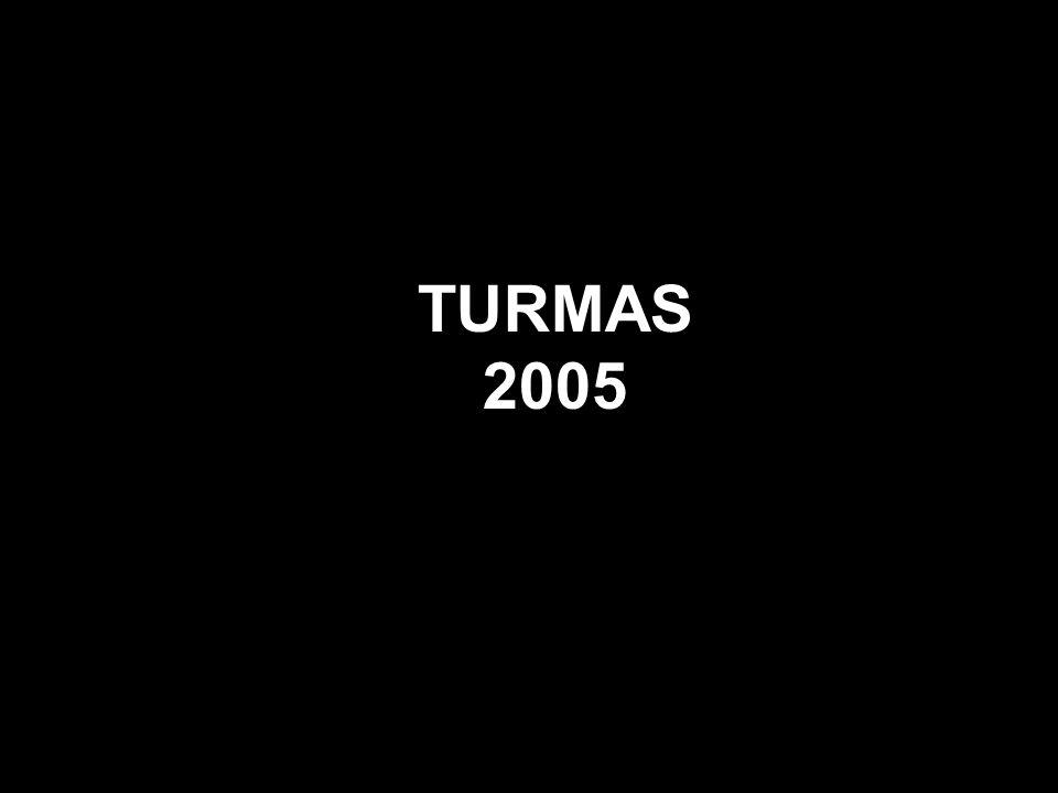 TURMAS 2005