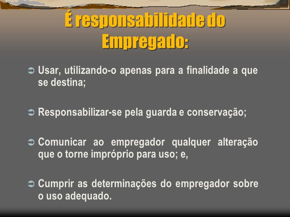 É responsabilidade do Empregado:
