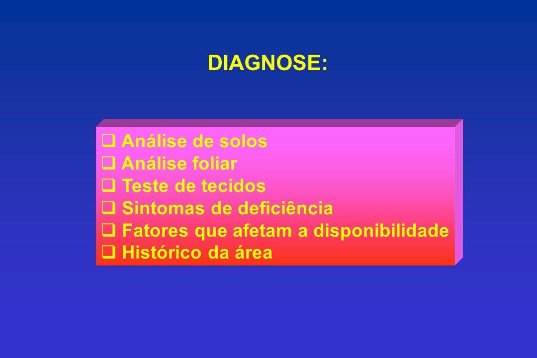 DIAGNOSE: Análise de solos Análise foliar Teste de tecidos