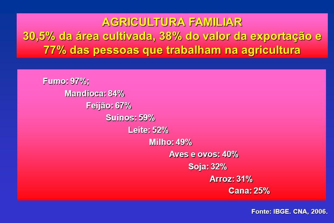 30,5% da área cultivada, 38% do valor da exportação e