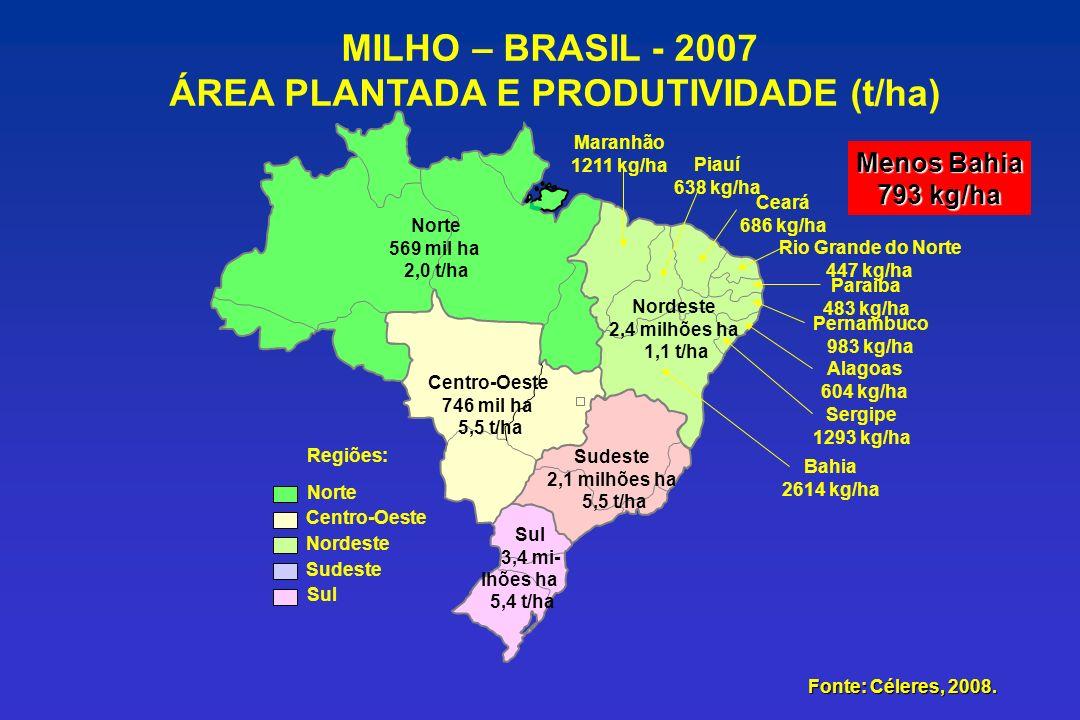 ÁREA PLANTADA E PRODUTIVIDADE (t/ha)