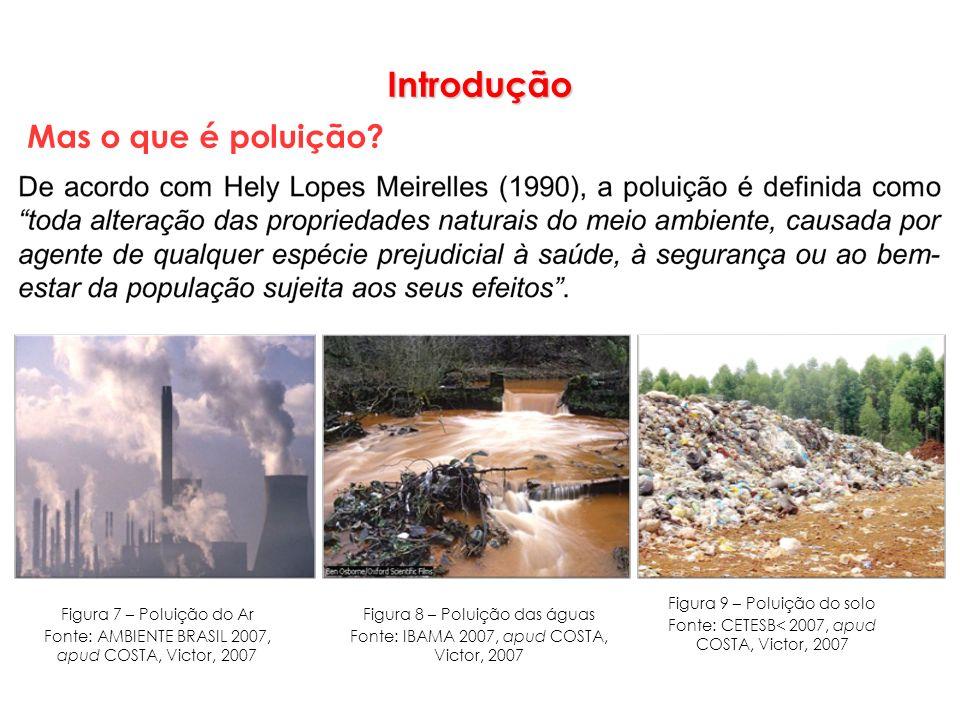 Introdução Mas o que é poluição Figura 9 – Poluição do solo